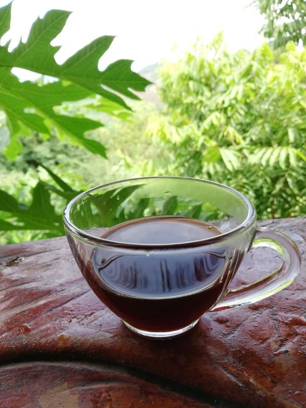 アカ族コーヒー